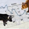 market timing 2