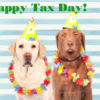 tax dogs