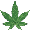 marijuana leaf baking