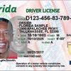 real id florida