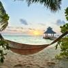 hammocks on the beach