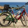 Fun Leisure Vacation Bicycle Outdoors Nature